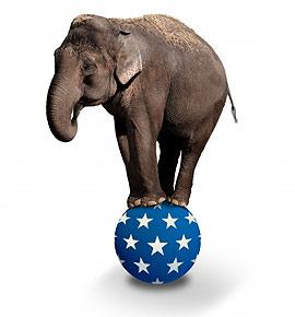Rechtsschutzversicherung - Elephant auf Ball